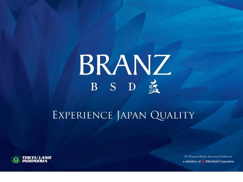 Branz BSD city