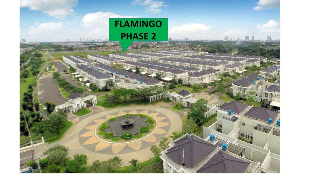flamingo phase 2
